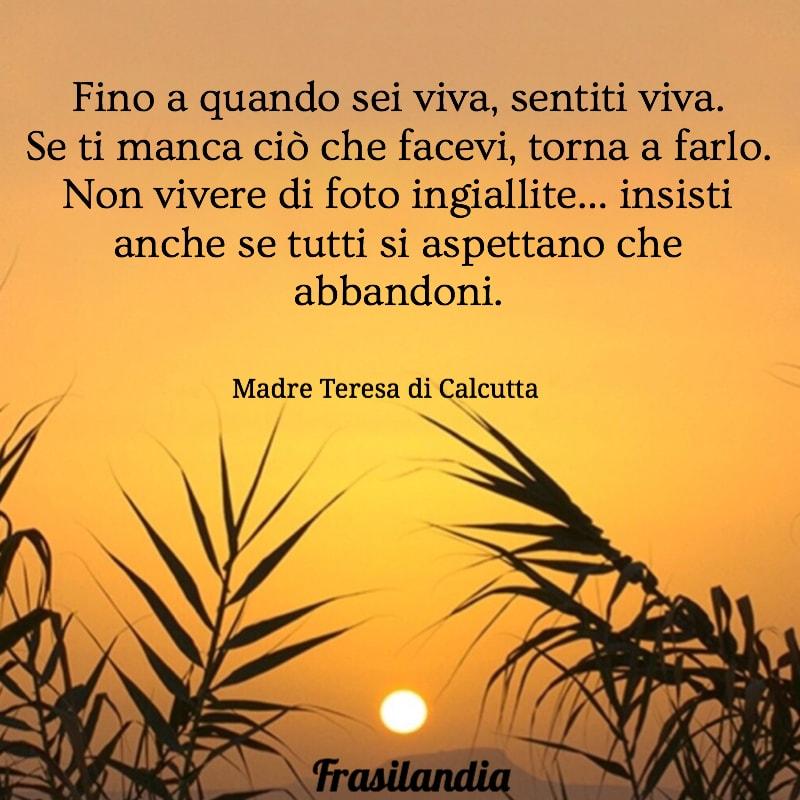 Madre Teresa Di Calcutta Sulla Vita Sulla Carita Sull Amore